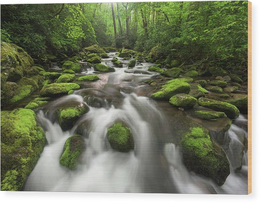 Roaring Fork Great Smoky Mountains National Park Tennessee Wood Print by Mark VanDyke