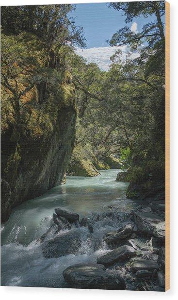 Rob Roy Stream New Zealand Wood Print