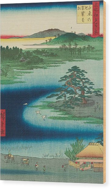 Robe-hanging Pine, Senzoku Pond Wood Print