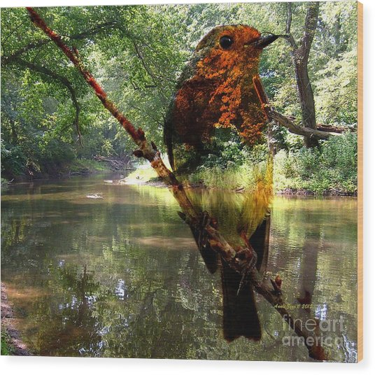 Robin By The River Wood Print