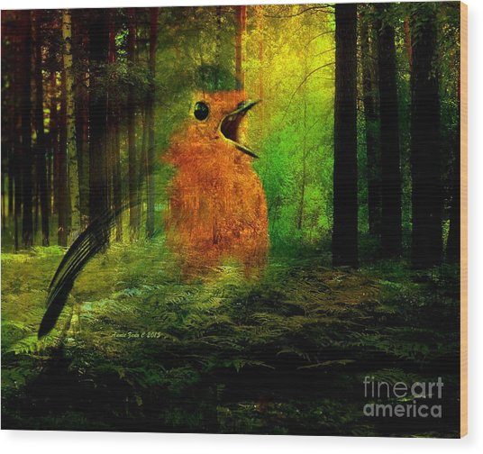 Robin In The Forest Wood Print
