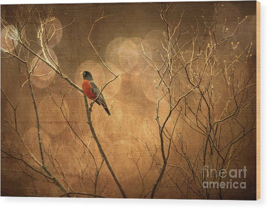 Wood Print featuring the photograph Robin by Lois Bryan