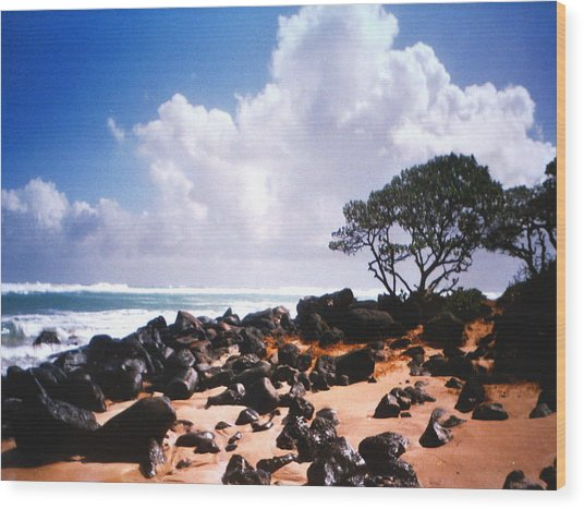 Rock And Sand Wood Print by Diane Merkle