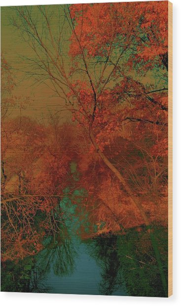 Rock Creek At M Wood Print