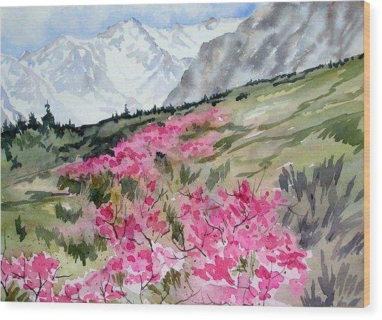Rock Creek Desert Peach Wood Print