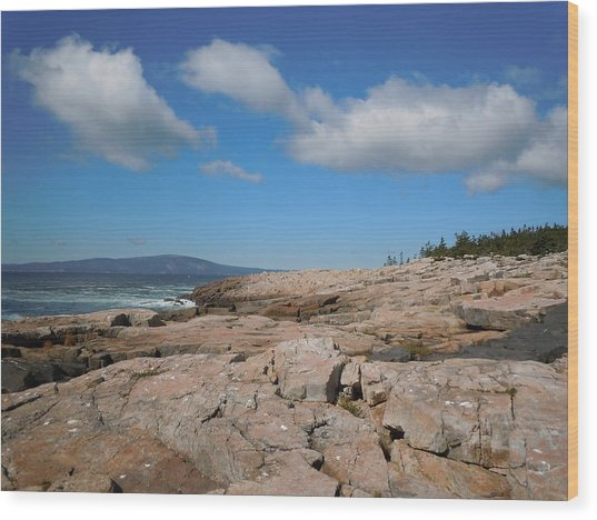 Rock Flow At Schoodic Point Wood Print