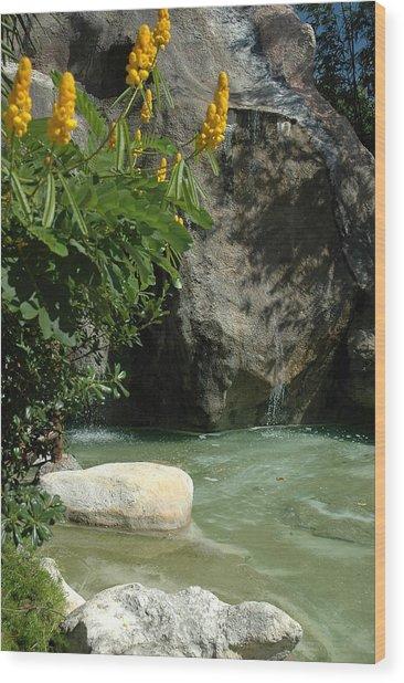 Rock Lagoon Wood Print by Lori Mellen-Pagliaro