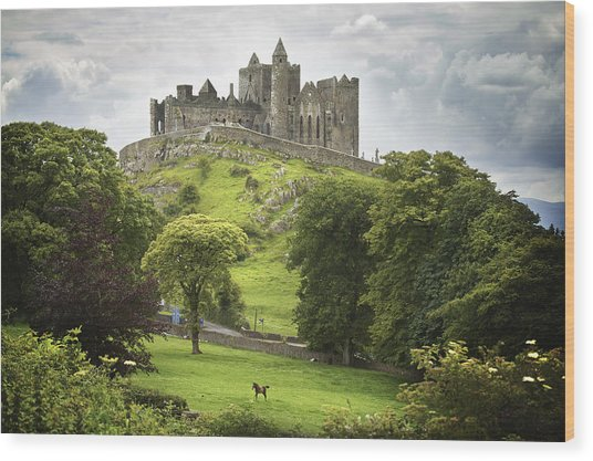 Rock Of Cashel Cashel County Tipperary Wood Print