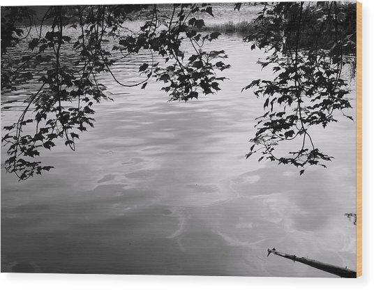 Rock Pond Wood Print