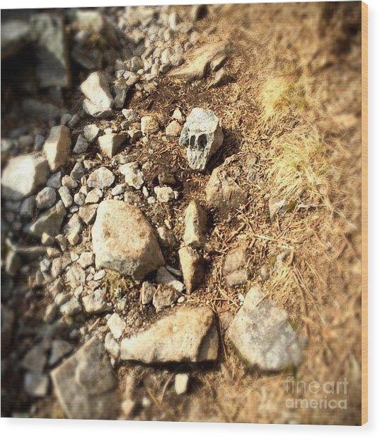 Rock Skull Wood Print