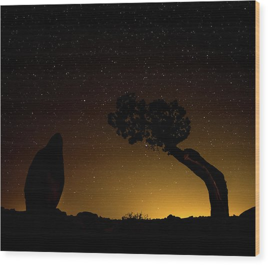 Rock, Tree, Friends Wood Print