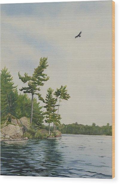 Rocks And Pines No.1 Wood Print by Debbie Homewood