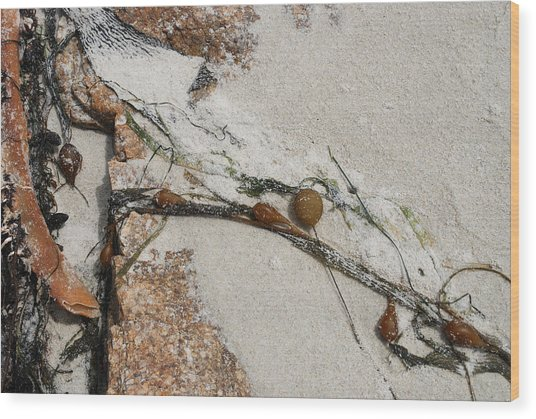 Rocks Longside Wood Print
