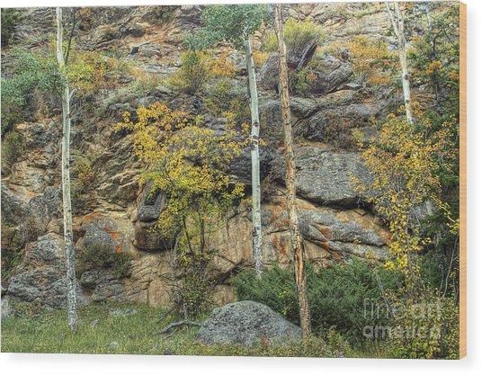 Rocks Wood Print