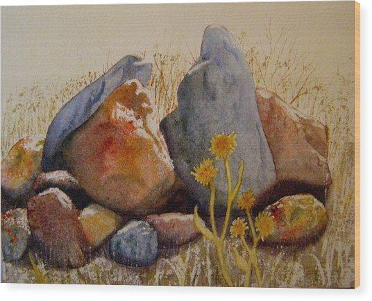 Rocks Wood Print by Teresa Boston