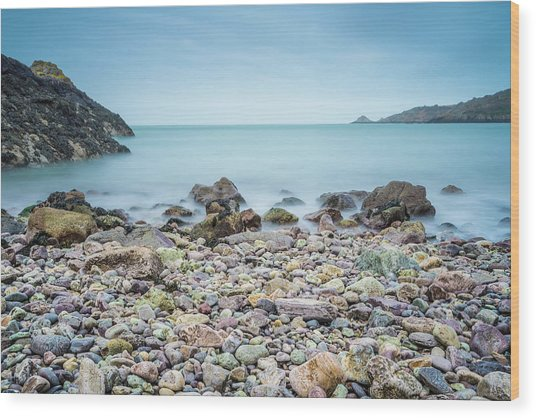 Wood Print featuring the photograph Rocky Beach by James Billings