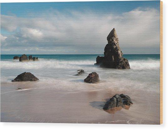 Rocky Beach On Sango Bay Wood Print