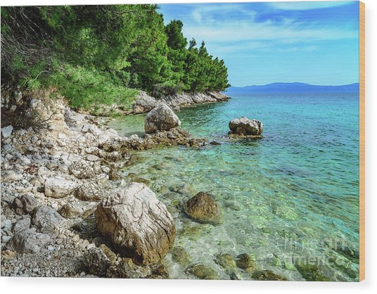 Rocky Beach On The Dalmatian Coast, Dalmatia, Croatia Wood Print