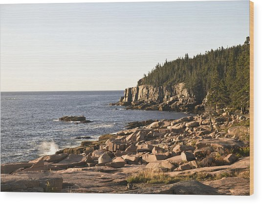 Rocky Coast Of Acadia Wood Print by Frank Russell