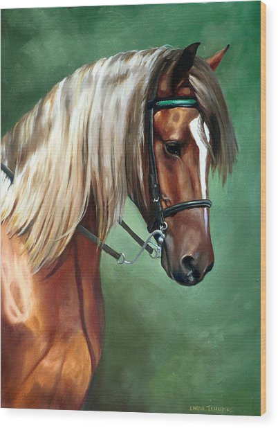 Rocky Mountain Horse Wood Print