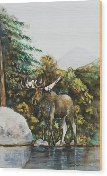 Rocky Mountain Moose Wood Print