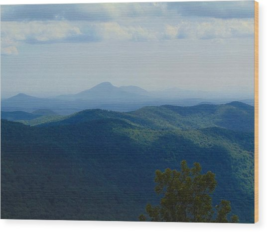 Rocky Mountain Overlook On The At Wood Print