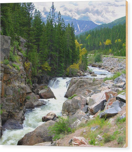 Rocky Mountain Stream Wood Print
