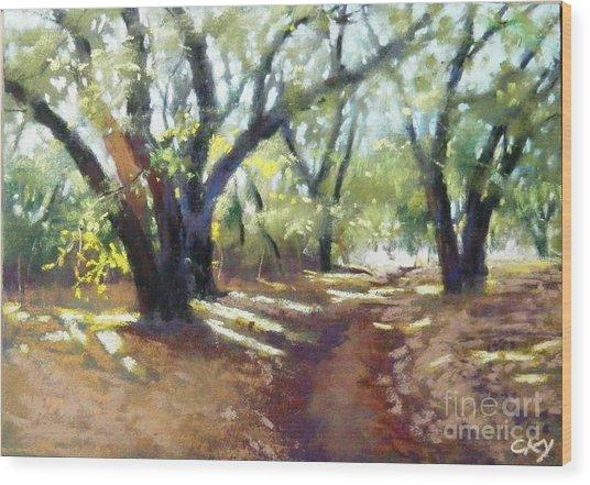 Rocky Oak Park Wood Print