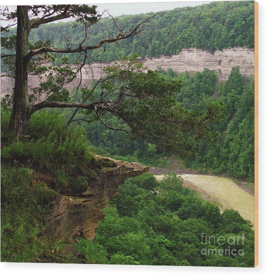 Rocky Overhang Wood Print