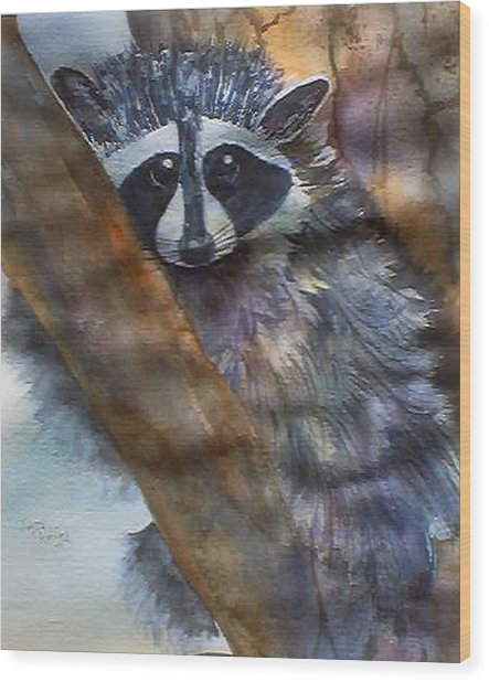Rocky Racoon Wood Print