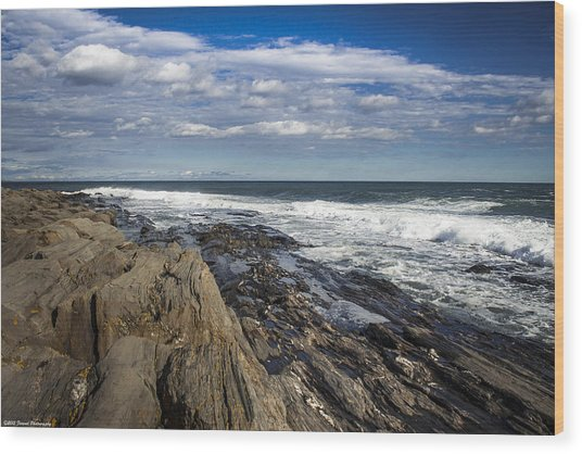 Rocky Shore Line Two Lights Maine  Wood Print