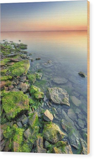 Rocky Shoreline Wood Print by Ryan Heffron