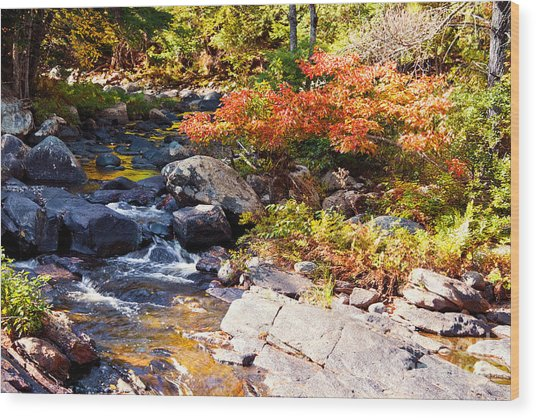 Rocky Stream Waterfalls Wood Print