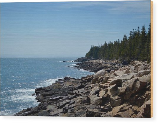 Rocky Summer Shore Wood Print