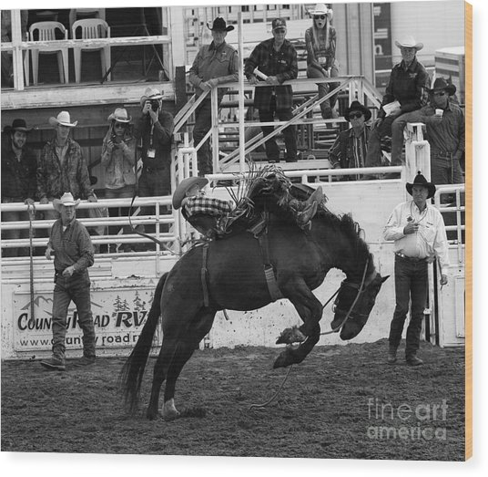 Rodeo Bareback Riding 3 Wood Print