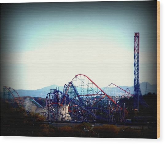 Roller Coasters At Twilight Wood Print
