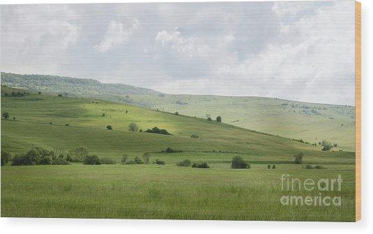 Rolling Landscape, Romania Wood Print
