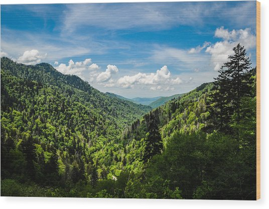 Rolling Mountains Wood Print