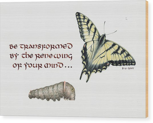 Romans 12 Be Transformed Wood Print