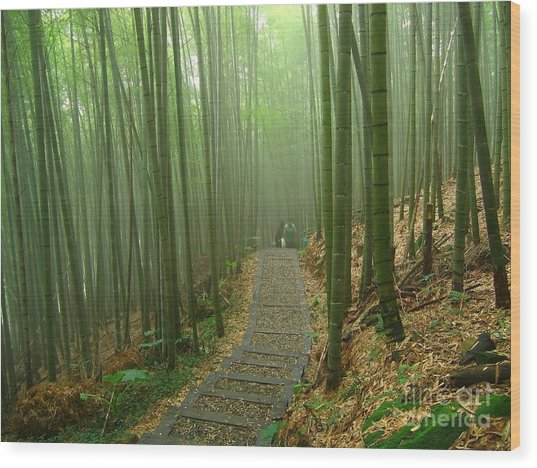 Romantic Bamboo Forest Wood Print