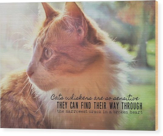 Ronald Quote Wood Print by JAMART Photography
