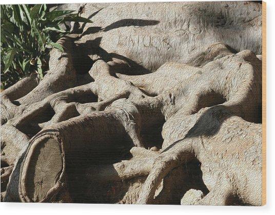 Roots And Graffiti Wood Print