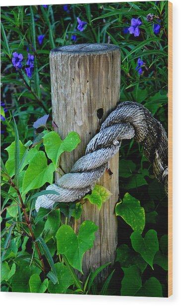 Rope And Vine Wood Print by Lyle  Huisken