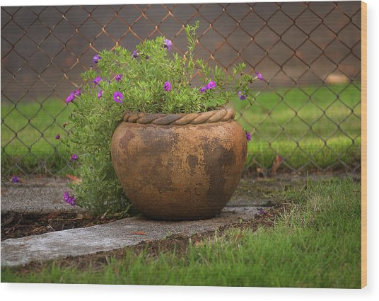 Rope Pot Flowers Wood Print