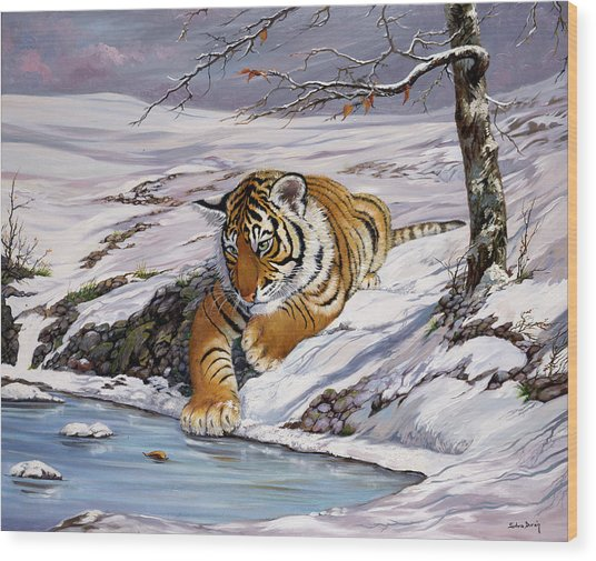 Roque Playing In The Ice Pond Wood Print by Silvia  Duran