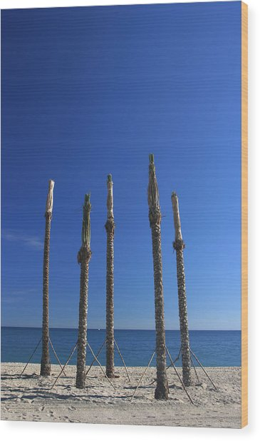 Roquettas 4 Wood Print by Jez C Self