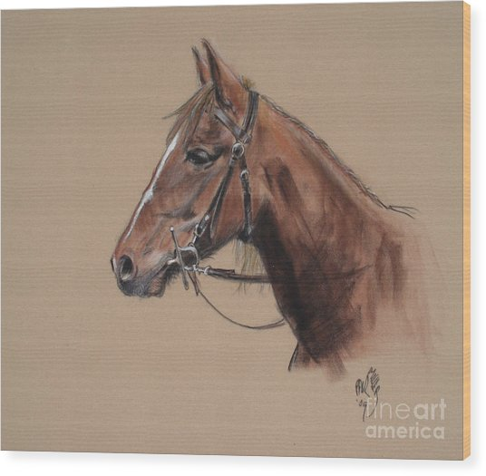 Rose At The Morgan Horse Ranch Prns Wood Print by Paul Miller