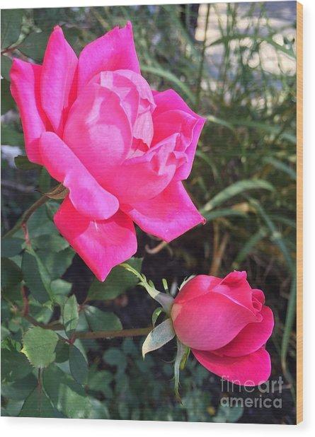 Rose Duet Wood Print