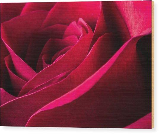 Rose Of Velvet Wood Print