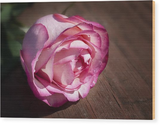 Rose On Wood Wood Print